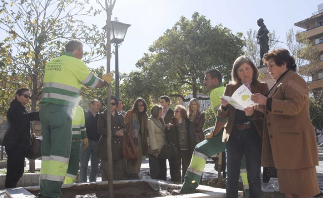 La delegada del Casco Antiguo, Amidea Navarro, pone en marcha la campaña Apadrina un Árbol