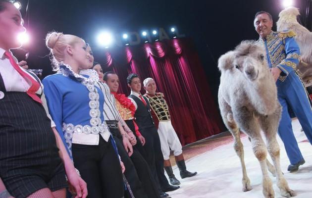 Espectáculo de este año en el Gran Circo Mundial en Sevilla / Kako Rangel