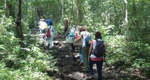 Enfermeras en Nicaragua, en fila con vacunas / Satse