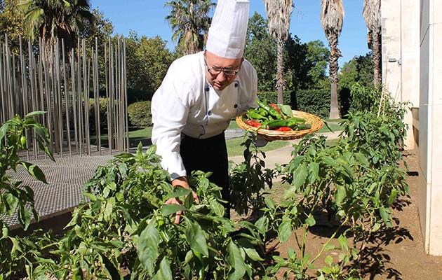 Hoteles con huerto en Sevilla