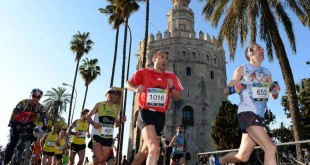 Maratón de Sevilla 2013 / Juan José Úbeda