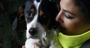 Olga Sarmiento, ayudante tecnico del centro, junto a uno de los perros que han sido adoptados durante 2013 en las instalaciones del Zoosanitario de Sevilla. Foto Fernando Ruso / Ayuntamiento de Sevilla.
