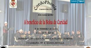 Cordophonia