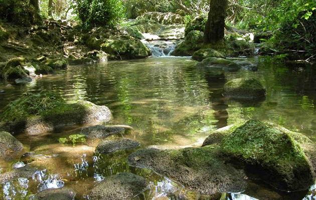 Río Hueznar en la Sierra Norte de Sevilla / José Manuel Brazo