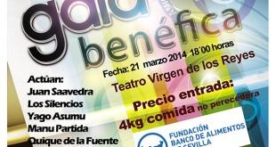 Gala Benéfica de Amigos Solidarios de Sevilla