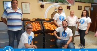 Donación de naranjas a S.O.S. Ángel de la Guardia