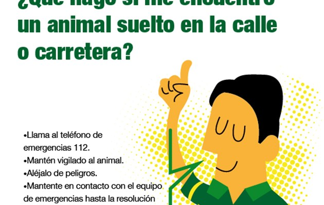 El Ayuntamiento lanza una campaña contra el abandono de animales de compañía