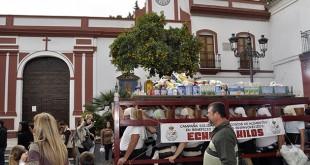 La Hermandad Sacramental de Tomares recoge 1.000 kilos de alimentos