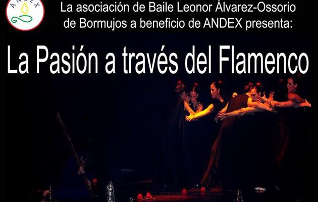 andex-pasion-flamenco