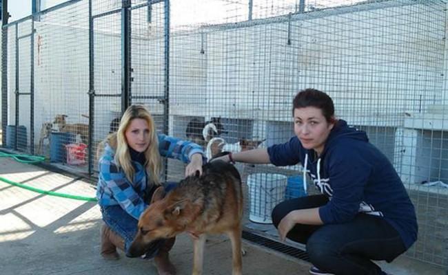 Sandy Viotti e Isabel Vega, junto a uno de los perros del refugio canino El sueño de Mufie - BORJA MORENO