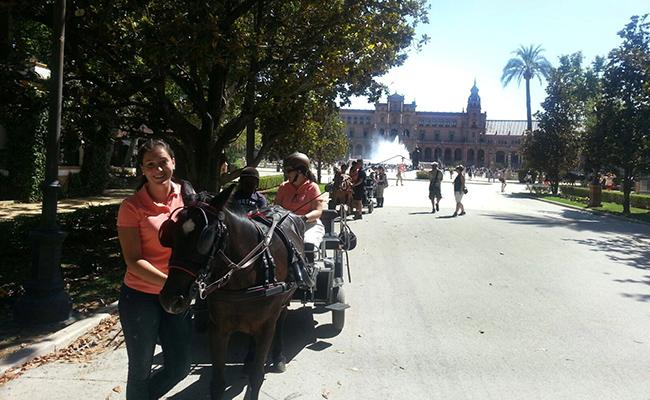 Uno de los coches de caballos que forman parte del programa  con  personal especializado. EFE/Fermín Cabanillas