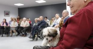 Las personas mayores y los niños son los principales beneficiarios de la compañía canina / Francisco de las Heras