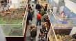 Más de 7.000 personas han visitado el Belén y la exposición benéfica de Playmobil en Tomares