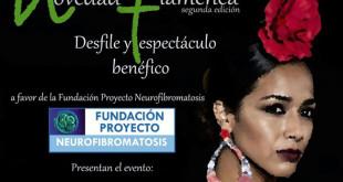 Espectáculo Novedad Flamenca