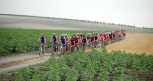 Ruta solidaria en bicicleta de montaña de Utrera a Dos Hermanas