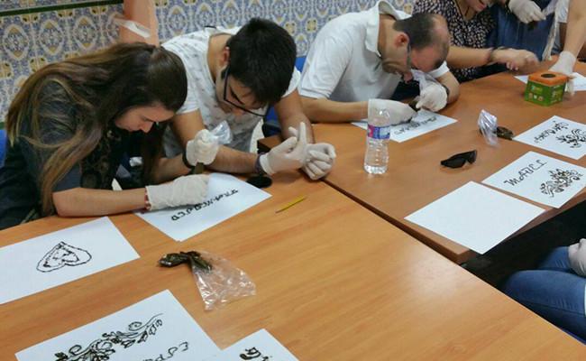 Una de las actividades que impulsa en Utrera la asociación Apdis / ABC