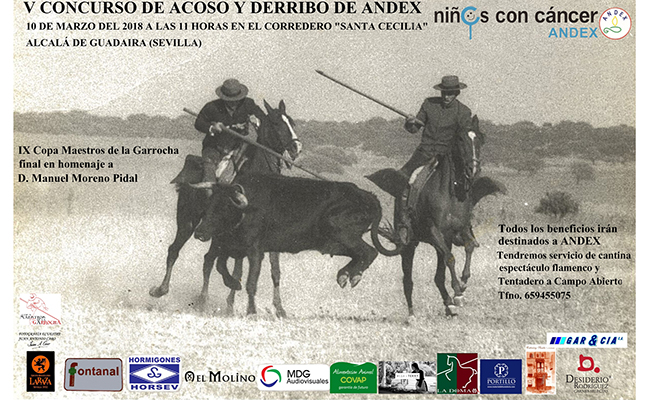 Cartel del concurso Acoso y derribo a beneficio de Andex