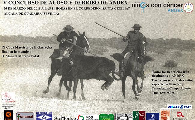 andex-concurso-acoso-derribo650