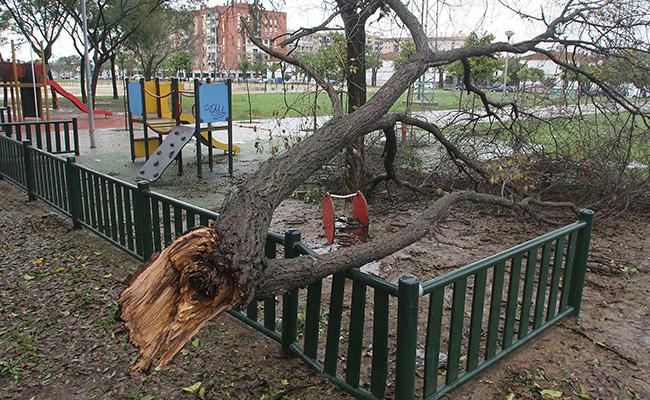 El temporal ha obligado a suspender algunas colectas y han provocado una menor afluencia de donantes a las mismas / Rocío Ruz