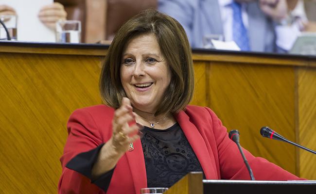La consejera de Asuntos Sociales, María José Sánchez Rubio, durante su intervención en el Parlamento andaluz / EFE