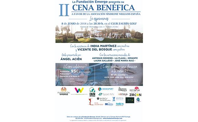 Cartel de la II Cena de Gala de la Fundación Emerge en Sevilla