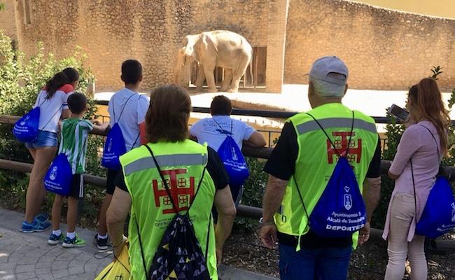 Excursiones solidarias para los niños de Alcalá de Guadaíra ...