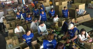 Más de 1.700 voluntarios participan en la clasificación posterior a la Gran Recogida de Alimentos / Fotos. Banco de Alimentos de Sevilla