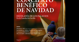 Concierto de Navidad de Andex